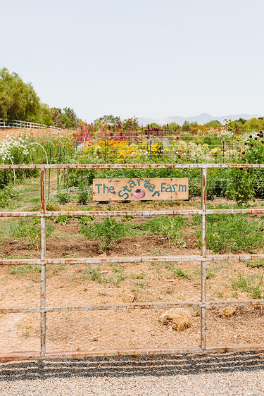 A gate with a sign for The Starter Farm in Santa Ynez California